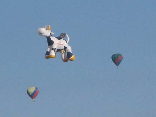 Creamland Cow Balloon